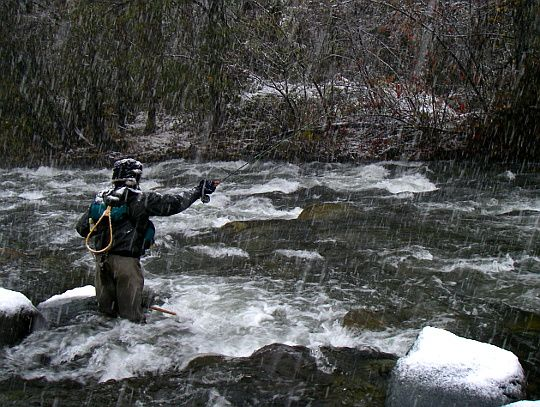 14 best america images on pinterest places to visit for Fly fishing 101