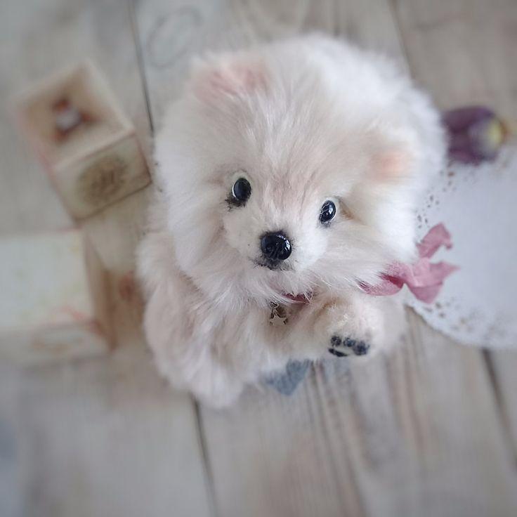 Авторская интерьерная игрушка собака породы Шпиц ручной работы. Может принимать любые позы - внутри тела, хвостика и лапок позвоночник. Доставка по России и СНГ