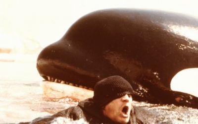 """""""Orka- wieloryb zabójca"""" - Richard Harris - 1977.  400x250_l5q8rm.jpg (400×250)"""