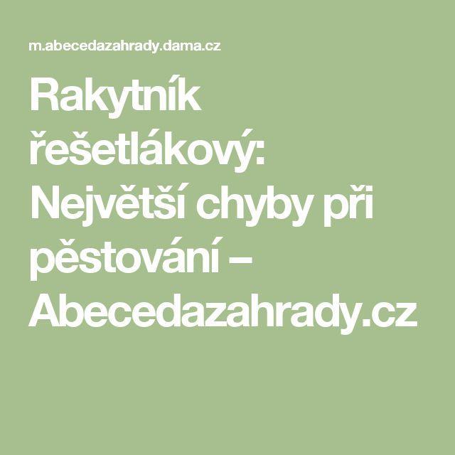 Rakytník řešetlákový: Největší chyby při pěstování – Abecedazahrady.cz