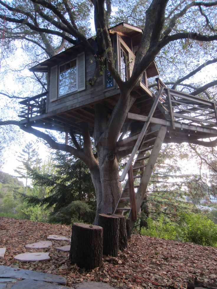 San Francisco Treehouse   Tiny House Swoon Want to find.