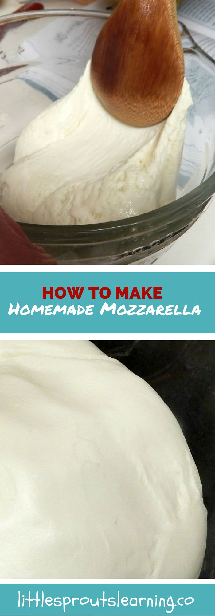 Making homemade cheese is not as hard as it may sound. Mozzarella is by far the easiest cheese I have made. It takes no special equipment.