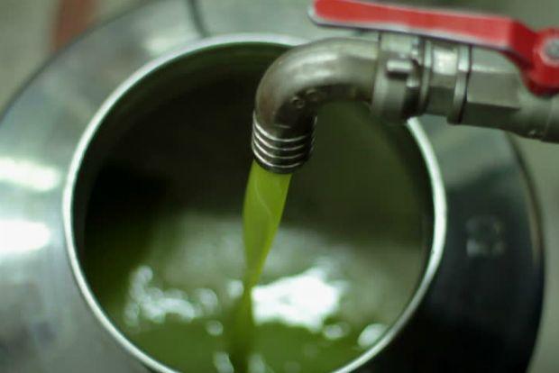 Τον κύριο ρόλο στην ποιότητα του ελαιολάδου που παράγει ένα ελαιοτριβείο παίζει ο χειριστ�%2
