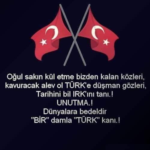 """EMMOĞLU #TürkBayrağıŞereftir DÜNYALARA BEDELDİR BİR DAMLA """"TÜRK"""" KANI @D_Ali_Torlak @KorayaydinMHP @mesutdedeoglu"""