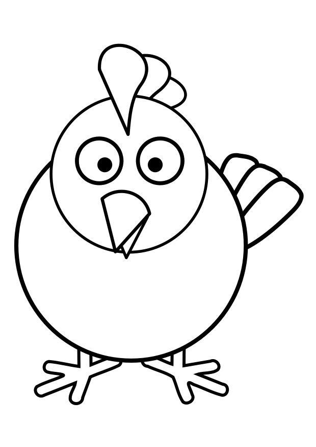35 best kippen & kuikens images on Pinterest