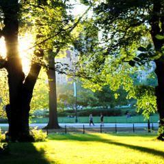 Sclérose en plaques : pourquoi les symptômes peuvent-ils s'améliorer lorsque les jours raccourcissent
