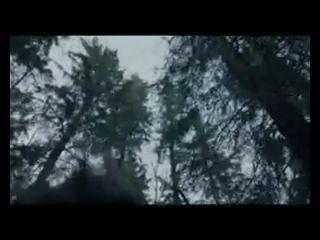 """Киномания Выживший (2016) Жанр: триллер, драма, приключения  Триллер """"Выживший"""". Действие происходит на Диком Западе в 19 веке. Исследователь Хью Гласс недавно сбежал из плена индейцев, но вскоре его смертельно ранил медведь гризли. Для товарищей он стал бременем и они решили его бросить. Умирающий исследователь чудом выжил. Придя в себя, Хью снова нужно бороться за выживание, ведь его путь домой пролегает через заснеженные горы и леса. В это же время Глассу не терпится отомстить бывшим…"""