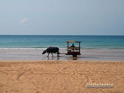Kali : Taraw Beach, Palawan