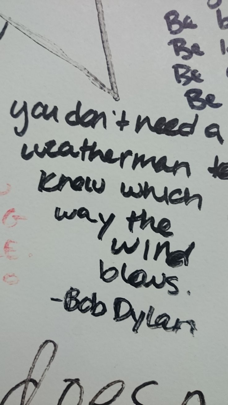 you dont need to be a weatherman to know which way the wind bathroom wallbob