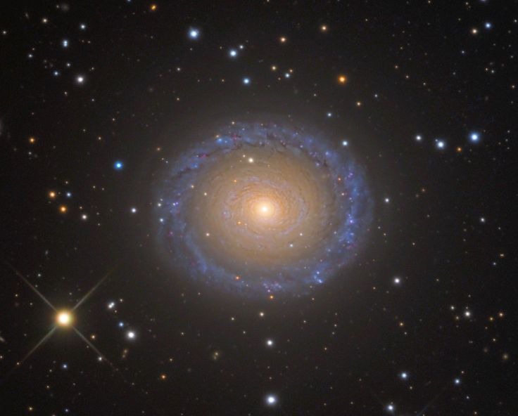 NGC 7217, a spiral galaxy in Pegasus --- Image Credit & Copyright: Adam Block/Mount Lemmon SkyCenter/University of Arizona (http://skycenter.arizona.edu/gallery/Galaxies/NGC7217)  NGC 7217 is an unbarred spiral galaxy that lies some 50 million light-years away from Earth in the northern constellation of Pegasus (the Winged Horse). It is receding from us at approximately 952 kilometers per second.