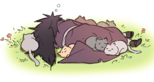 I love Uchihas with cats :D