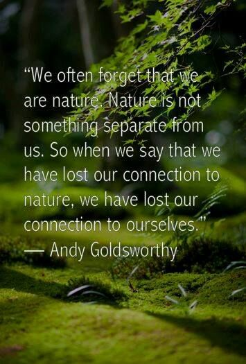 We are one with ~ Nature ~ a bond never to be severed!  She ~ ignites your senses ~ while you are with her.  Lightbeingmessages.com