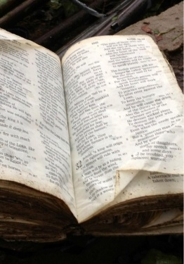 Bible Found in OK Tornado Debris Opened to Isaiah 32:2, Providing Hope for Many