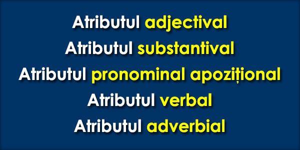 Atributul adjectival Atributul adjectival se exprimă prin: - adjectiv propriu-zis, provenit din verb la participiu, provenit din verb la gerunziu (gerunziu acordat); Exemplu: floare frumoasă. - adjectiv pronominal posesiv, demonstrativ, nehotărât, negativ, interogativ, relativ, de întărire; ...