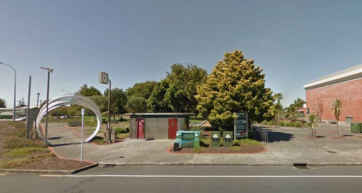 Jack Pringle Park, Te Atatu Peninsula. March 2012.