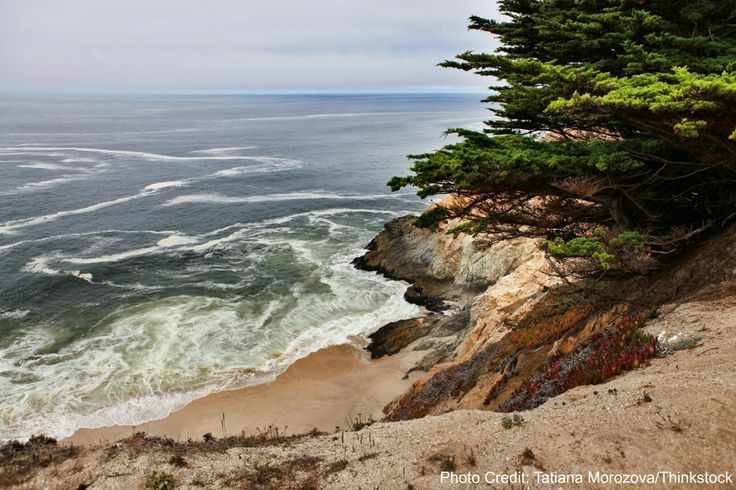 If you're looking for some amazing hikes in Half Moon Bay, these 5 spectacular trails from redwood forests to sandy beaches are at the top of the list!