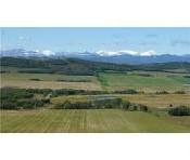 Home. My happy place. Southern Alberta foothills ranch lands. An idyllic childhood.