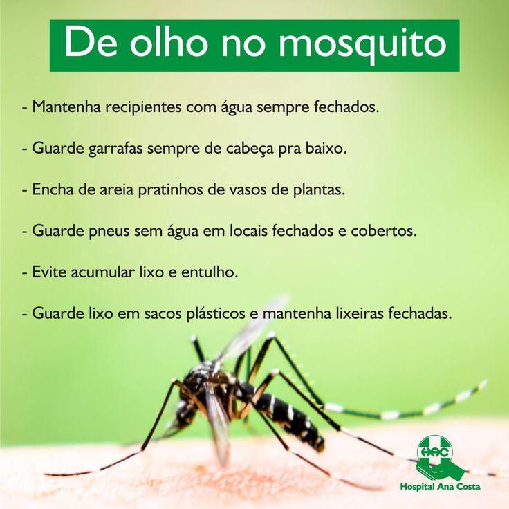 Não podemos descuidar. A prevenção contra a dengue precisa ser contínua. Faça sua parte! #AnaCosta #HAC #HospitalAnaCosta #Dengue #Saúde #Prevenção