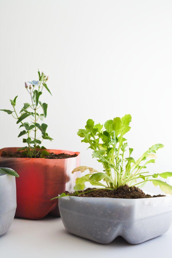 Easy DIY Upcycled Plastic Milk Jug Planters