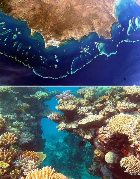 Natural features of Australia. The Great Barrier Reef.
