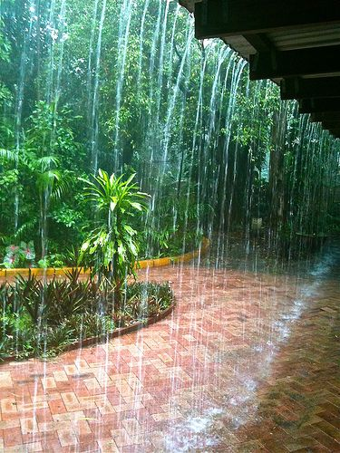 Monsoonal shower in the suburbs or Darwin, NT. The houses have no gutters so the rain just pours off the roof.