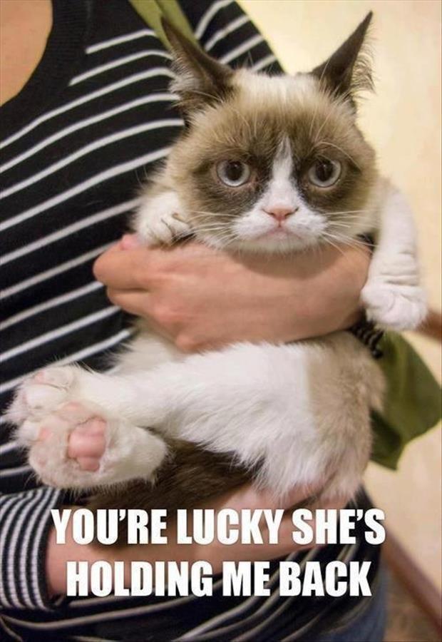 Grumpy is pretty cute, but don't tell him that!
