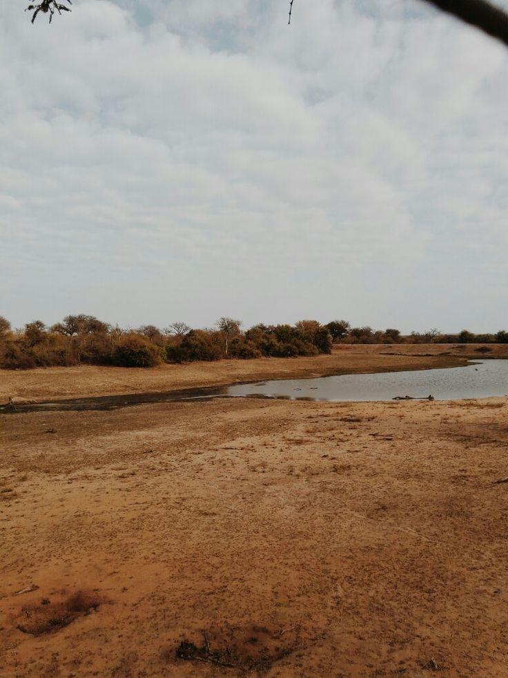 @theresajoy_m | Kruger National Park