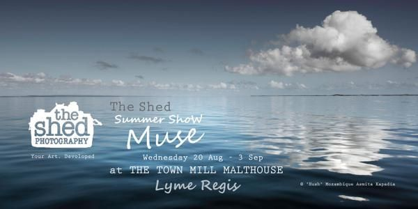 Join Shed Gallery Muse Show 20 Aug-3 Sept, Lyme Regis In Dorset ENGLAND. 18 artists join forces.Excited to be involved…...