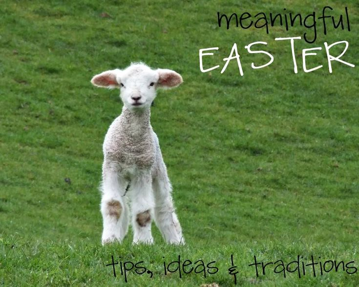 "Over 50 great ideas for making Easter about The Lamb and not ""the bunny"""