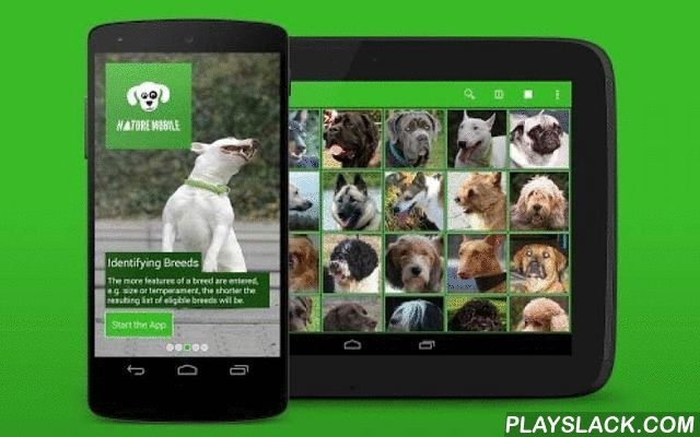 IKnow Dogs 2 LITE  Android App - playslack.com , The ultimate dog breed guide, all in the palm of your hand! Do you want to know more about dogs? Looking for a dog that best fits in your family?NATURE MOBILE introduces - iKnow Dogs 2 PRO - an ideal guide to the most popular dog breeds. Finally you have the direct option to identify different breeds without a book. You get a comprehensive library full of facts, figures and images. Find the perfect dog for you and your family. Or find the…