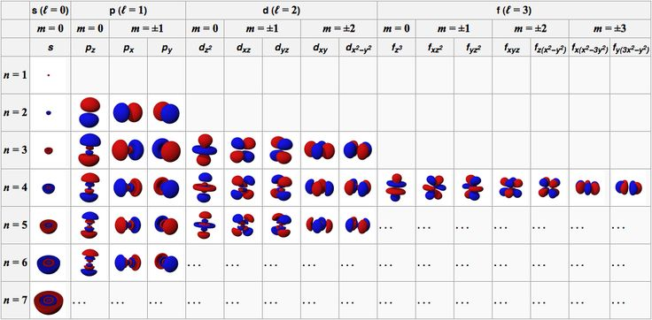 magnetic quantum number and shape of orbital - Google Search