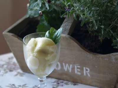 lime basil sorbet | deliciousness | Pinterest