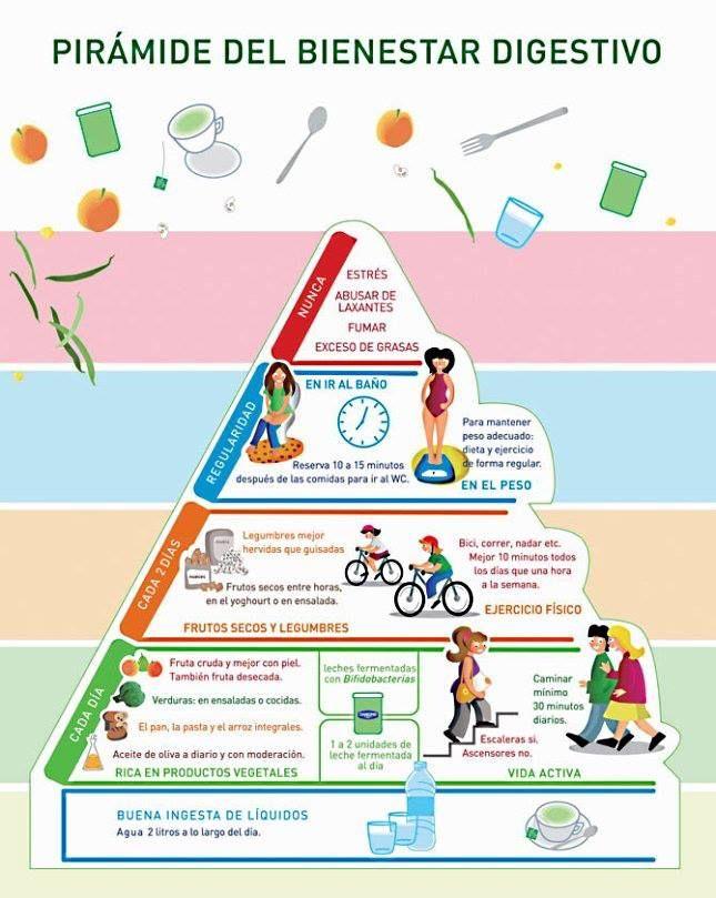 Pirámide del bienestar digestivo #nutricion #alimentacion #piramide #bienestar #salud