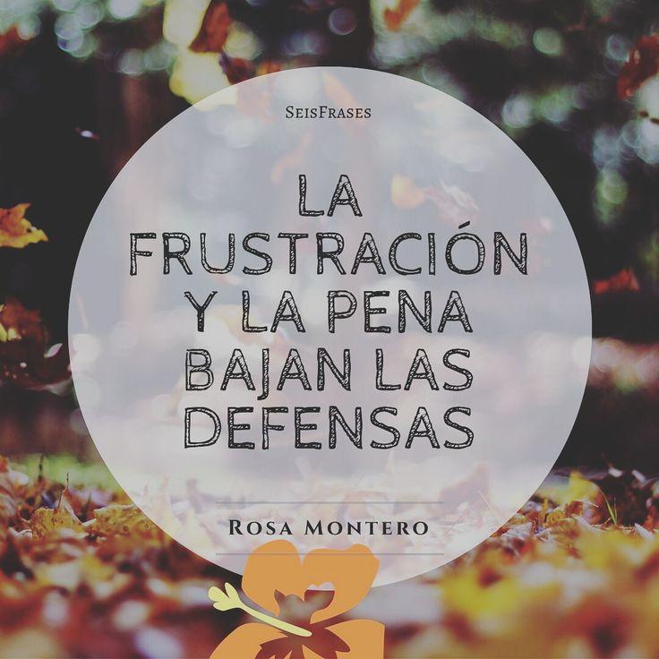 La frustración y la pena bajan las defensas. Rosa Montero, La Ridícula Idea De No Volver A Verte.
