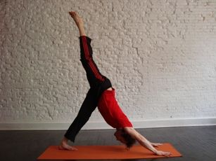 Moves for beginners:  Sequences & Yoga Moves