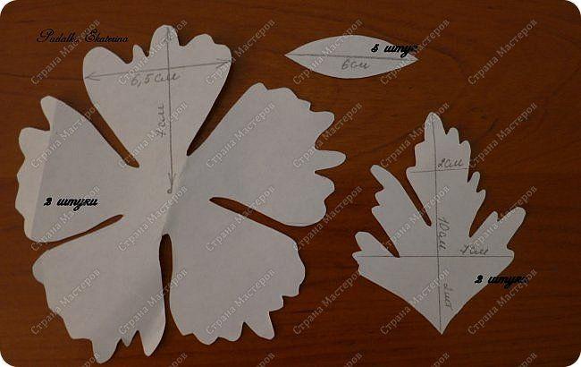 Выкройки для цветов для фоамирана
