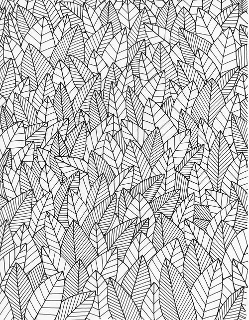 Black and white line art foliage pattern/ Leafs, nature, botanical.