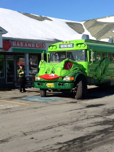 Gecko Bus (@MDGConsultants) - Dartmouth/Halifax, N.S.: We're a one of a kind in North America and considered the Freakiest Food truck in Canada. The remarkable thing about this food truck is that we run it all year round, rain, snow, sleet whatever we still run it. Also, patrons come inside to order your food and not stand outside in the nasty weather. We can get about 20 to 30 people lined up inside.