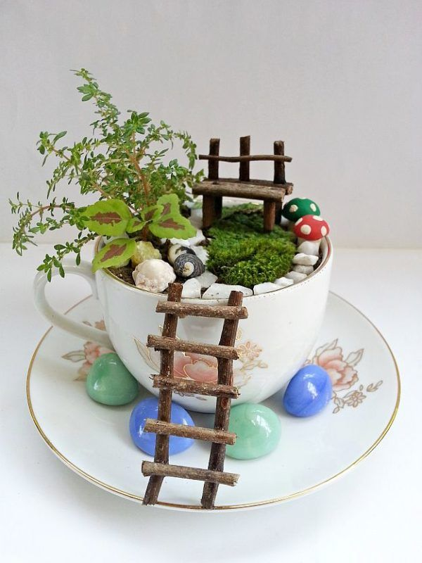 Step-10 | DIY Fairy Garden To Create A Little Zen In Your Busy Life