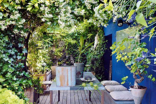 63 best deco jardin images on Pinterest Gardens, Evergreen shrubs