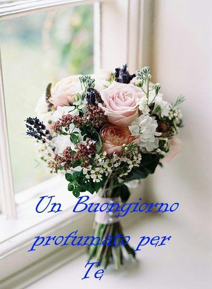 http://ift.tt/2xx2Our Frasi di buongiorno sms di buongiorno messaggi di buongiorno buongiorno per te bongiorno per whatsa