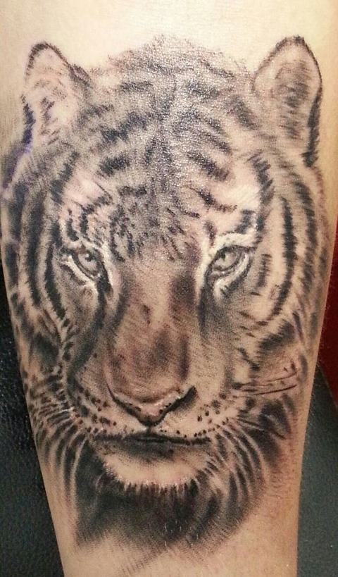 57 best images about tiger panther on pinterest ink for Panther tiger tattoo