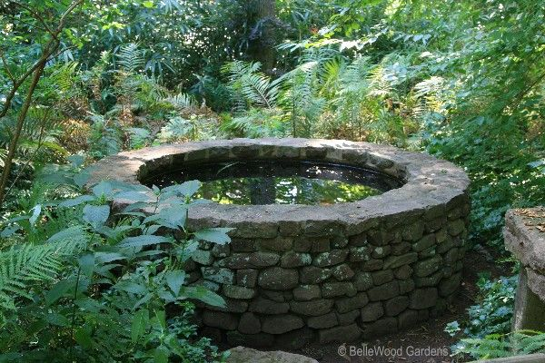 Google Image Result for http://www.bellewood-gardens.com/2008-2/Willowwood_2008-08_water%2520well.jpg