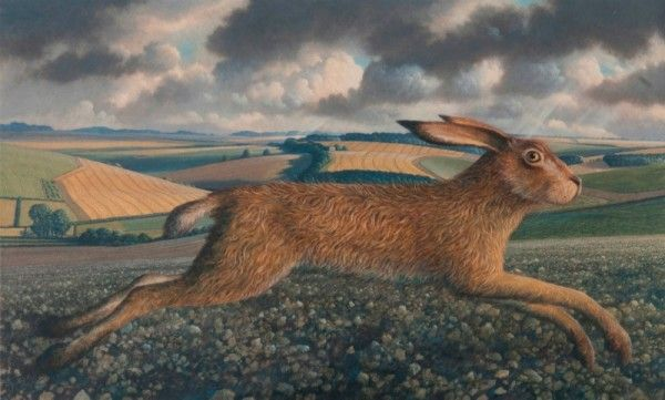 Image result for painted running hare