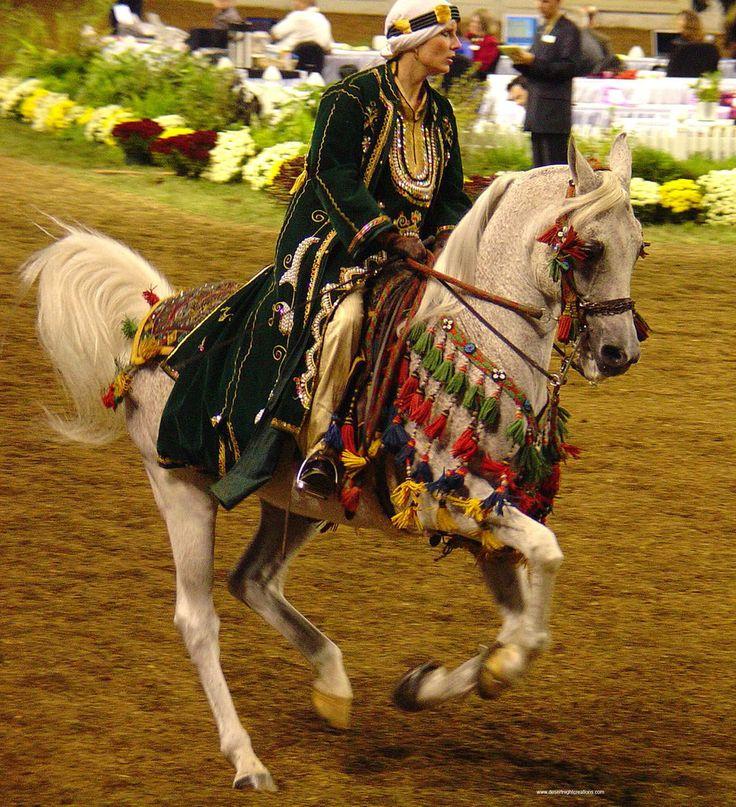 Дойки horse