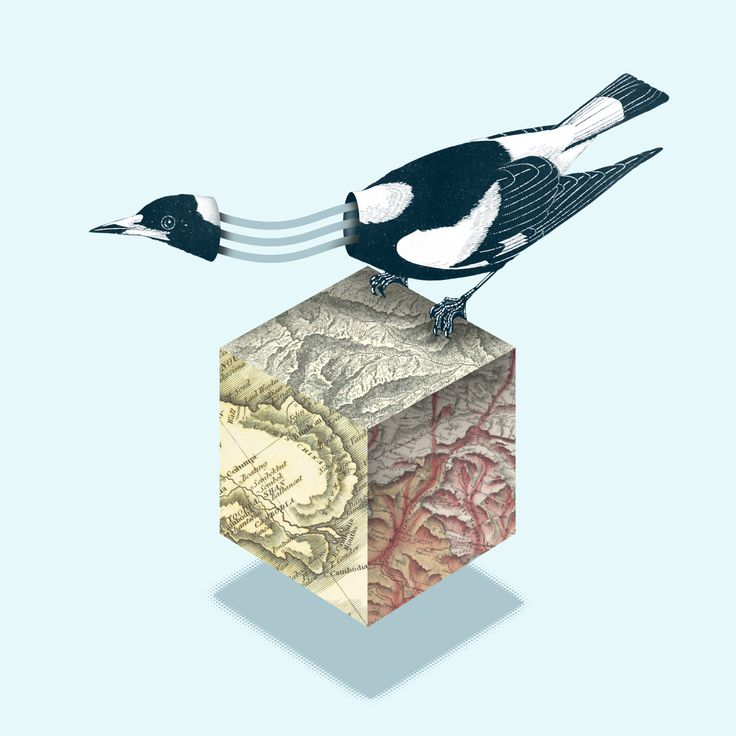 Magpie  |  Collage by Studio Lowbrow