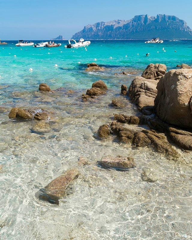 Mare cristallino o color turchese ?? In Sardegna si possono avere entrambi😍😍😍 Rigorosamente senza filtro...Spiaggia del Dottore 😊 #spiaggiadeldottore#capoceraso#sardegna #sardinia#lanuovasardegna #instasardegna #focusardegna #sardegnaofficial #igersardegna#igersassari#sardegna_reporter #volgosardegna#sardiniamylove #sardegnareflex#sardinia_exp#beach#sardegnageographic #ig_skyline #sardiniain #beautiful #sardinianworld#italian_trips#volgoitalia#paradise#nofilter#italy