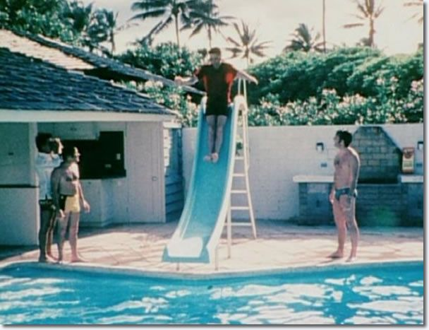 25 best ideas about elvis presley hawaii on pinterest - Swimming pool marie madeleine lyrics ...