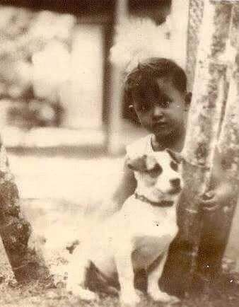 The first dog he kept was a Thai breed. He named it Bobby.