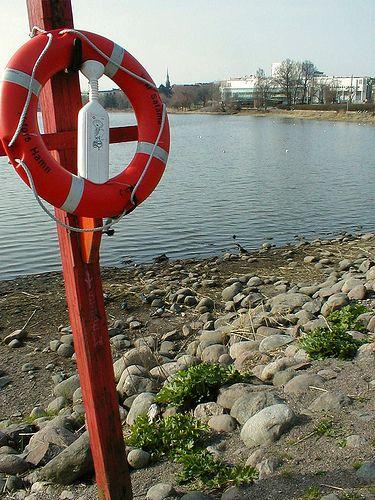 Töölö Bay shoreline.  http://www.flickr.com/photos/tietoukka/2425349095/